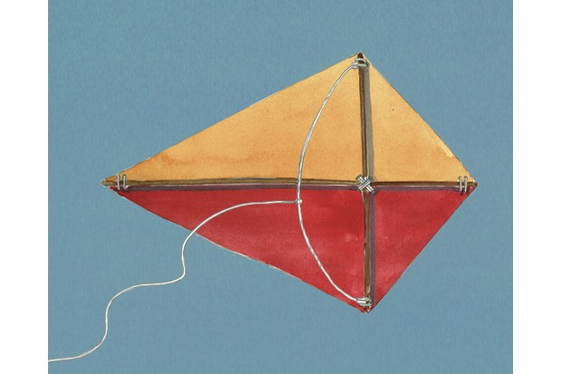Kite-diagram5-58d43f5