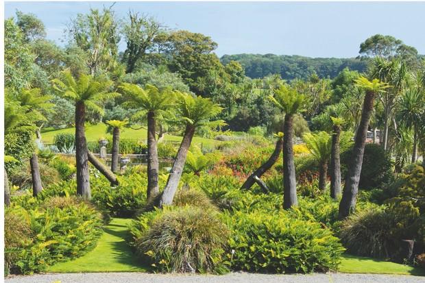 Logan-botanic-gardens-487fcdf