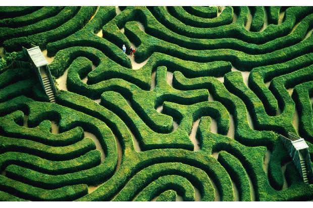 Longleat-Maze-b93a5e4