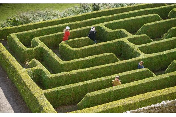 Maze-159615312-c10ed67