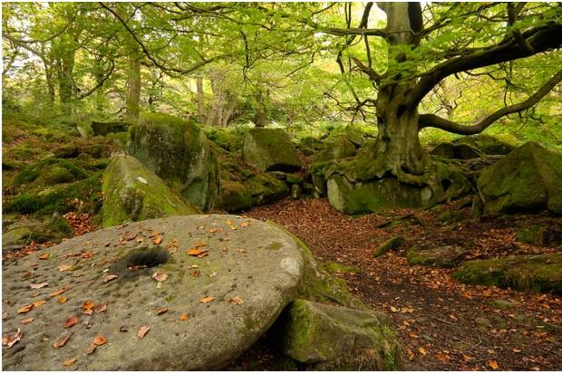 Padley Gorge millstones