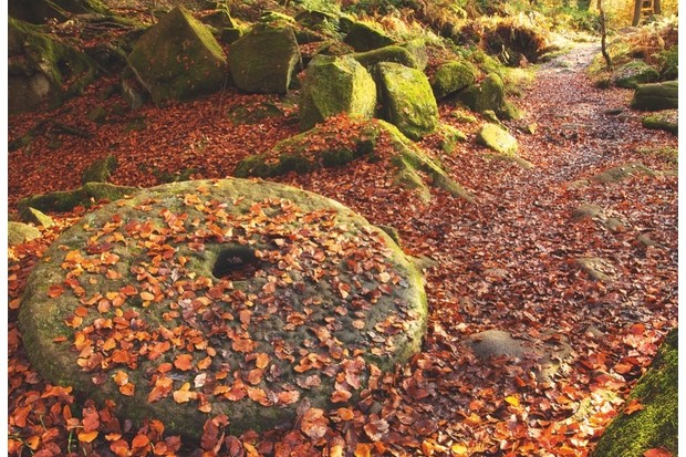 Abandoned millstones are an incongruous sight in the woodland glades of Padley Gorge