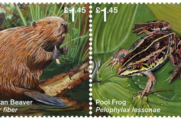 Reintroduced-Species-Full-set-hi-res-f7cb857
