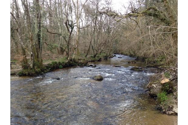 River-0e4a692