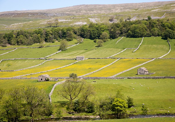 Attractive countryside River Wharf valley, Wharfedale, Kettlewell, Yorkshire Dales national park, England, UK