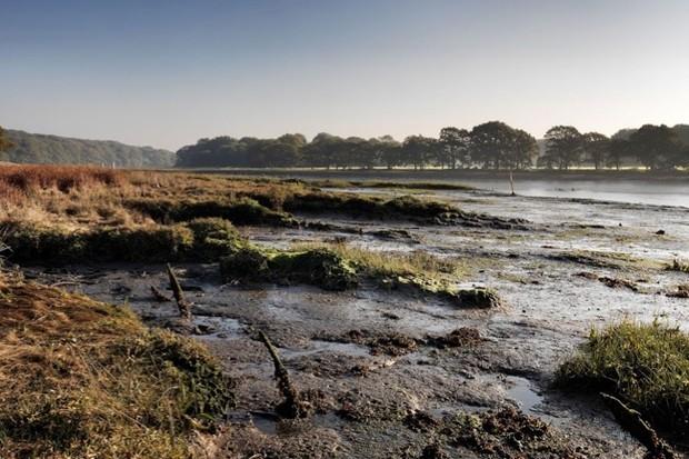 RiverHamble2copyrightJamesO.Davies-1624eca