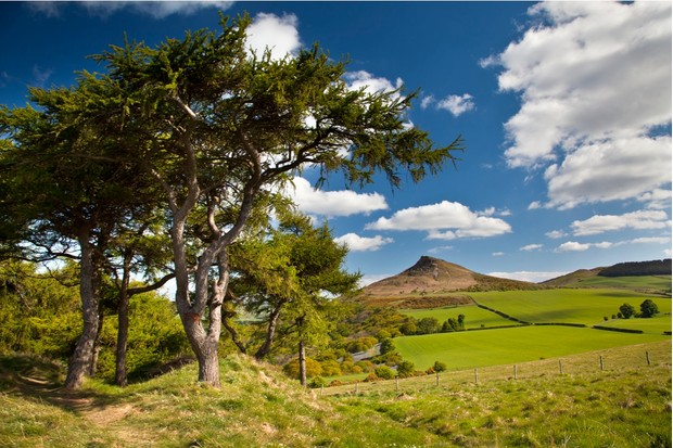 Roseberry Topping dominates the landscape, but is less than a third of the height of Scafell Pike, England's highest mountain
