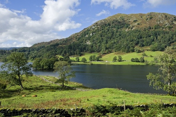 Looking across Rydal Water to Nab Scar from Loughrigg Terrace in summer. (Photo by: Loop Images/UIG via Getty Images)
