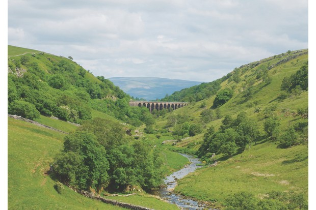 An old viaduct, built in 1861, rises almost 30m on 14 stone arches above Smardale Beck – it's a fine vantage point for spotting all-year-round residents to the national nature reserve, such as sparrowhawks, buzzards and treecreepers