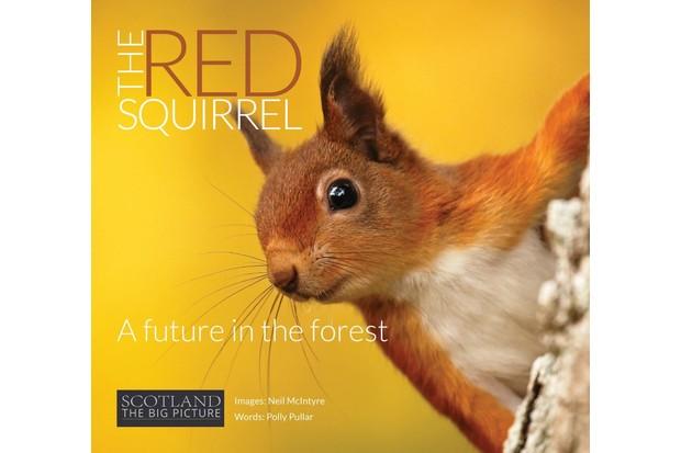 Squirrel20Front20Cover20v003-med_0-da568cd