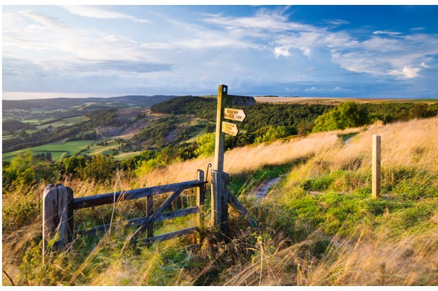 United Kingdom, England, North Yorkshire, Sutton Bank. A signpost on the Cleveland Way.
