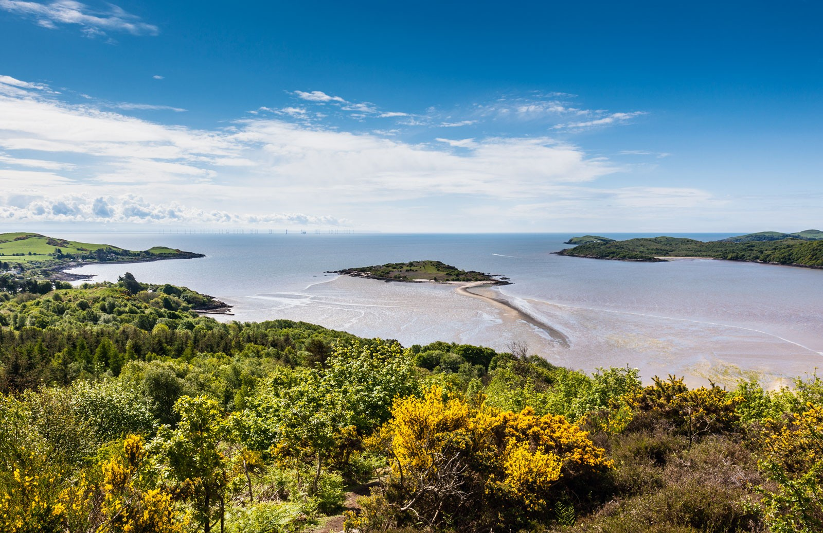 From The Muckle overlooking Rough Island and Rough Firth