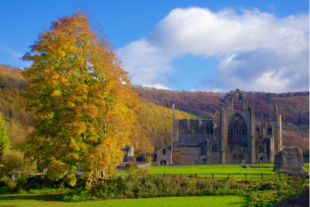 Tintern Abbey in autumn (Getty)