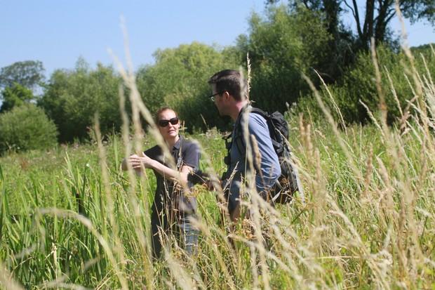 Magor Marsh, Gwent Wildlife Trust