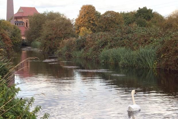 Walthamstow_Wetlands3_0-c3ffb79