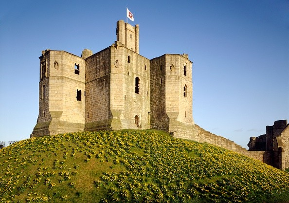 Warkworth Castle, Northumberland, c2000s(?). View of the keep from the north-west with daffodils covering the mound. Warkworth Castle was the home of the Percy family, who at times wielded more power in the North than the King himself. The keep was built in the late 14th century. Artist: Historic England Staff Photographer. (Photo English Heritage/Heritage Images/Getty Images)