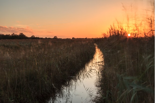 River at sunset (National Trust Images)