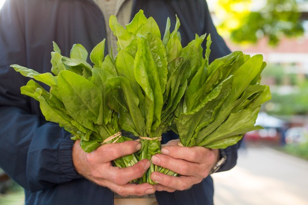 A farmer holds bunches of sorrel at a farmer's market in Fayetteville, Arkansas.