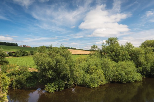 Wye-valley-hillside-9158207