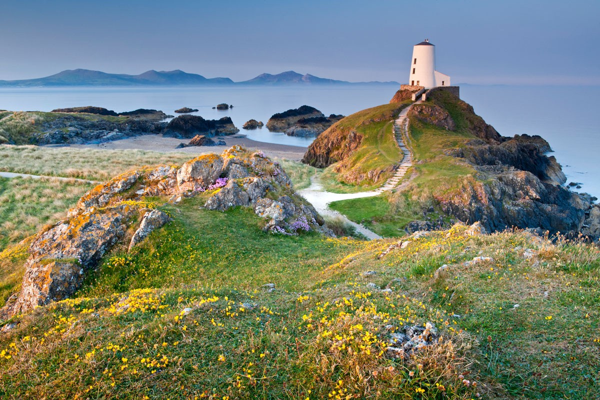 angleseygetty-5242371