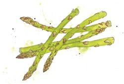 asparagus-914e237