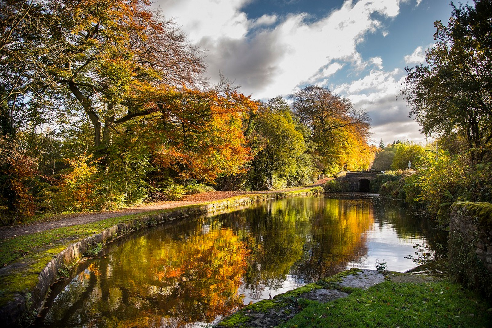 autumncolourscanalandrivertrust_0-989177e