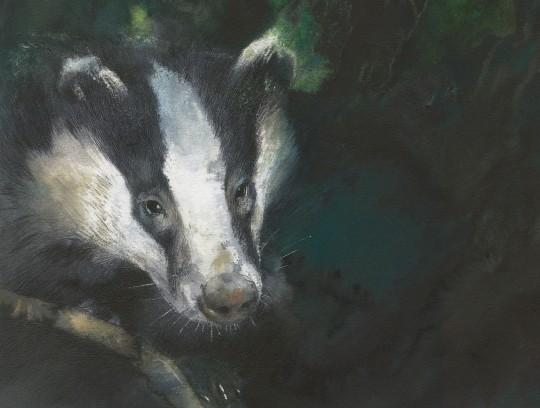 badger-3-part-1.ti