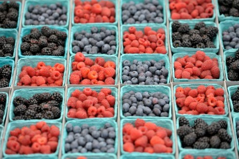 berries_main-6465f18