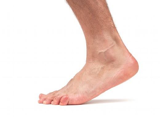 bigfoot-33e9d96