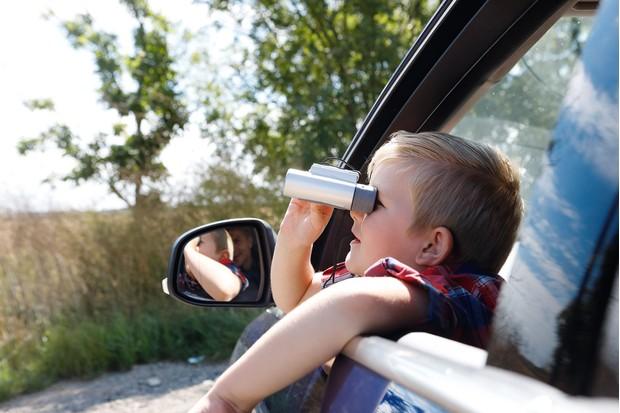 birdwatching-from-car-7cc762a