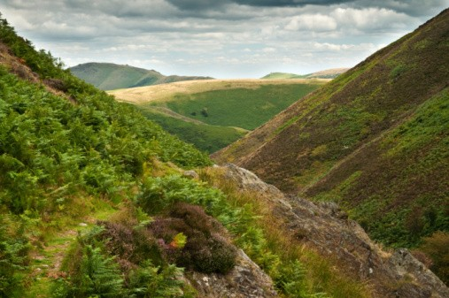 Carding Mill Valley, part of the Long Mynd (Shropshire Hills) area of outstanding natural beauty