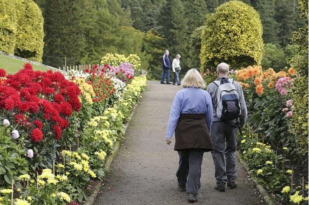 Gardens at Cragside