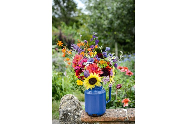 cut-flowers-in-jug-b09472b