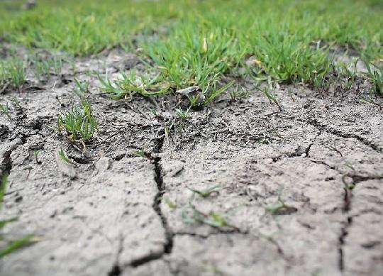 drought_large-c2e1399