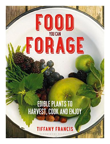 food-you-can-forage-854a0bb