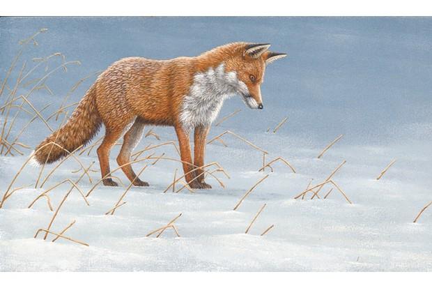 fox-mousing20in20snow2C20painted20by20Robert20E20Fuller-6b8d69a