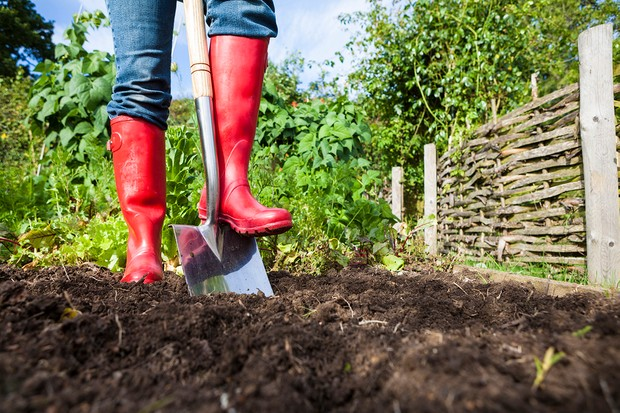 Gardening stock photo of a gardener wearing bright red wellies digging over soil in a vegetable patch.