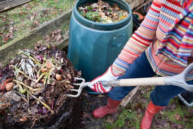 gardeninggetty-0e0517d