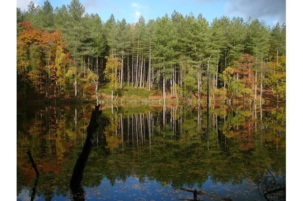 Dead Lake, Cheshire