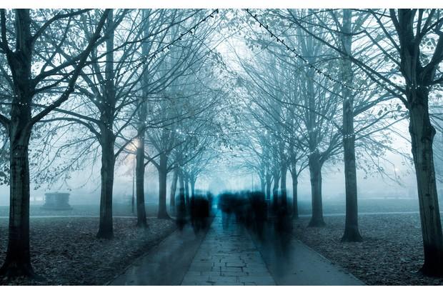 haunted-walk-108365346-b1d8ab6