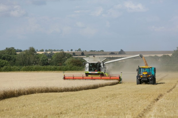 hope-farm-wheat-harvest-f3bd3db
