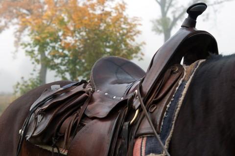horsemain-483e71f