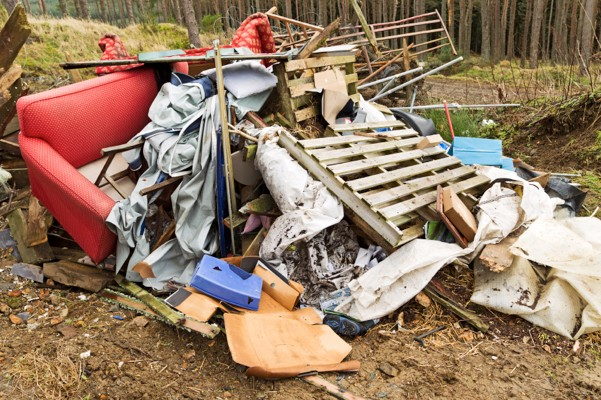 Illegal dumping of refuse in a forest.