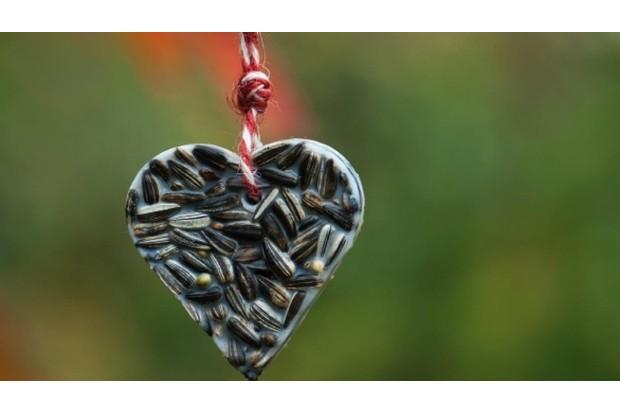 Sunflower seed bird food heart ornament