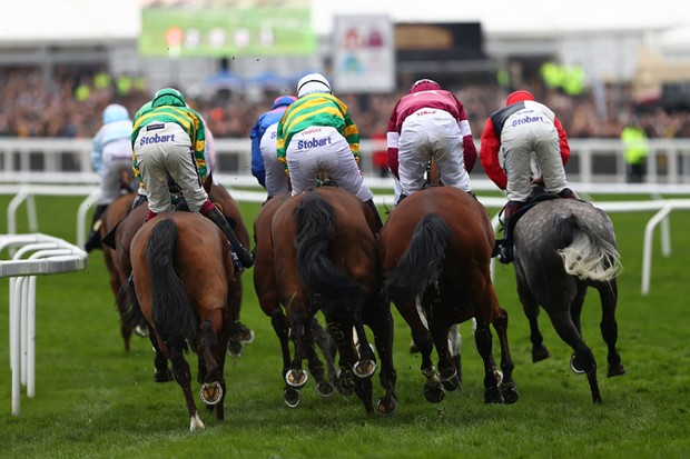 CHELTENHAM, ENGLAND - MARCH 17:  A general view of the runners in the Timico Cheltenham Gold Cup Chase during Gold Cup Day on day four of the Cheltenham Festival at Cheltenham Racecourse on March 17, 2017 in Cheltenham, England.  (Photo by Ian Walton/Getty Images)