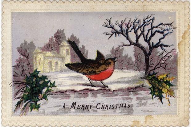 robinchristmascard-3decc76