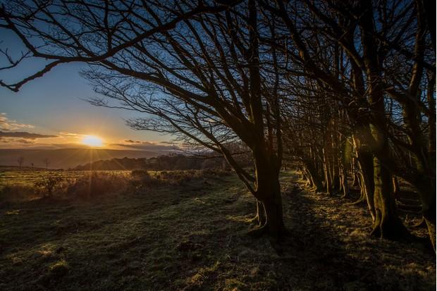 sunset-quantock-hills-b238d72