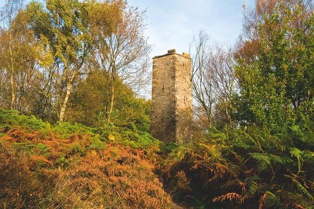 Earl Grey Tower