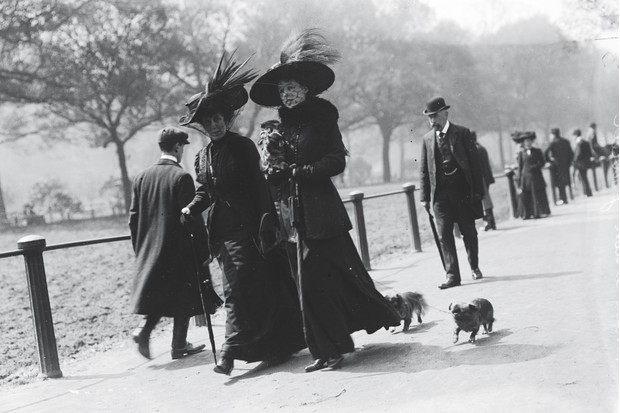 Victorian fashion, stuffed bird hats