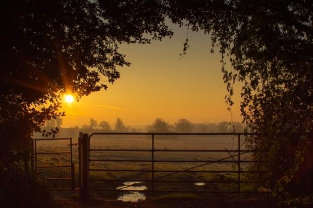 'Sunrise Over Coleshill'by Ian Sheriffs